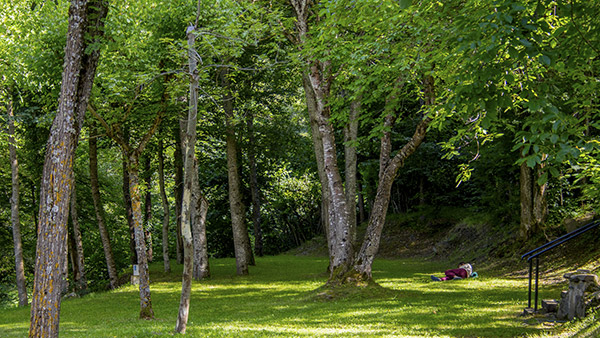 Greenery-bedura-park